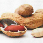 capa-amendoim